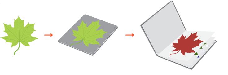 RGB модель формирования изображения